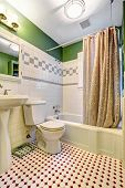 picture of bath tub  - Bathroom inteiror with green wall and white tile trim - JPG