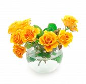 image of flower arrangement  - Bouquet of orange roses in a round vase - JPG
