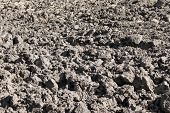 stock photo of rich soil  - Arable field with black soil in fine autumn day
