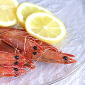 image of tiger prawn  - Australian cooked King prawns on a glass plate - JPG