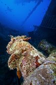 picture of wrecking  - deep wreck scuba diving and exploration on a wreck - JPG