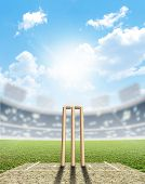 stock photo of cricket  - A cricket stadium with cricket pitch and set up wickets in the daytime under a blue sky - JPG
