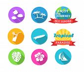 image of sailfish  - Round Colored Tropical Icons in flat style - JPG