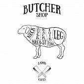 image of lamb shanks  - Butcher cuts scheme of lamb - JPG