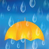 stock photo of raindrops  - Yellow umbrella and raindrops - JPG