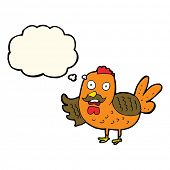 stock photo of roosters  - cartoon old rooster with thought bubble - JPG