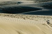pic of quicksand  - Te Paki sand dunes in Northland New Zealand - JPG