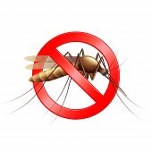 pic of gnats  - Stop mosquito sign isolated photo realistic vector illustration - JPG