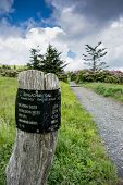 image of gap  - A sign post at Carvers Gap indicates distances hikers will face as they climb Round Bald - JPG