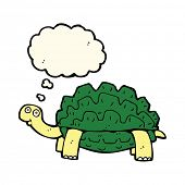 image of tortoise  - cartoon tortoise with thought bubble - JPG