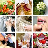 Постер, плакат: цветные свадебные фотографии