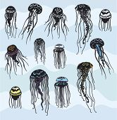 Set of Stylized Jellyfish