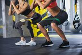 Close Up Of Athletic Women In Squat Together In Gym. Couple Of Fit Girls Are Exercising With Resista poster