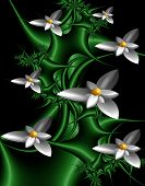 Computer Generated 3d Fractal.beautiful Flower Card.exotic Flowers, White With Yellow Middle On Gree poster