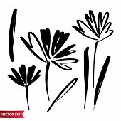 Vector Set Of Ink Drawing Palm Leaves, Monochrome Artistic Botanical Illustration, Isolated Floral E poster