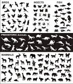 image of zoo animals  - big collection of vector silhouettes of various animals - JPG