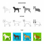 Dog Breeds Flat, Outline, Monochrome Icons In Set Collection For Design.dog Pet Vector Symbol Stock  poster