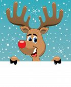 image of rudolph  - vector christmas illustration of rudolph deer holding blank paper for your text - JPG