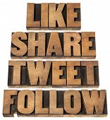 like, share, tweet, follow words - social media concept - isolated text in vintage letterpress wood