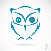 stock photo of night-blooming  - Vector image of an owl on white background - JPG