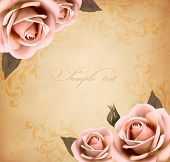 picture of rosa  - Pink roses on a vintage old paper background - JPG
