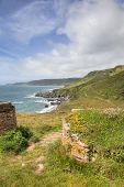 Devon Coastline In Spring