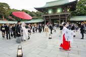Tokyo,japan-nov 20 :a Japanese Wedding Ceremony At Meiji Jingu Shrine