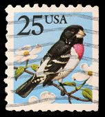 UNITED STATES OF AMERICA - CIRCA 1988: A stamp printed in the USA shows Rose-breasted Grosbeak - Phe