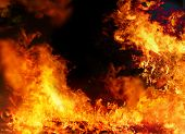 stock photo of infernos  - Large burning fire background on a black background - JPG