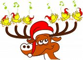 foto of antlers  - Nice deer with red Santa hat while holding with its antlers a group of six enthusiastic yellow birds which sing and celebrate Christmas in a very happy mood - JPG