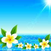 foto of frangipani  - White tropical flowers on shining ocean background - JPG