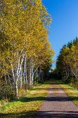 image of confederation  - Trans Canada Trail - JPG