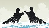 image of hippopotamus  - Illustration of two hippopotamuses fighting in water - JPG