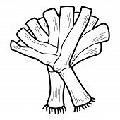 picture of leek  - Coloring book for children - JPG