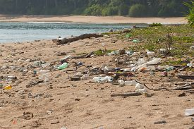 foto of water pollution  - Dirty beach on the island of Little Andaman in the Indian Ocean littered with plastic - JPG