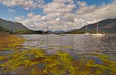 picture of bute  - Loch Linnhe is a nine and a half mile loch in both Argyll and Bute and the Highlands - JPG