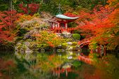 Beautiful autumn in japanese garden with colorful maple trees, Kyoto, Japan poster