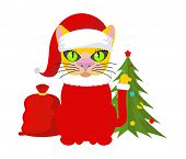 Christmas Cat. Pet In Santa Claus Hat. Red Bag With Gifts. New Year Illustration. Xmas Template Of C poster