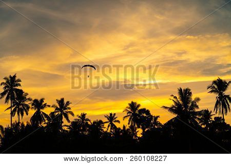 poster of Man Is Riding Para Motor In Beautiful  Sunset Cloud Sky And Coconut Trees In Background.