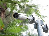 Cctv Security Camera Installed In Village For Security Guard Monitoring And Surveillance For Not Let poster