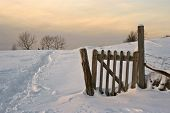 picture of snow border  - Fence field ans snow  - JPG