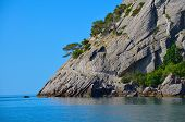Rock Separating The Sea And Sky, Tree Growing On A Rock, Blue, Clear Sky, Clear Sea Water, Crimea,ns poster