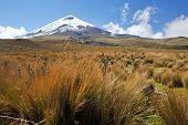 Постер, плакат: Гора Котопахи самый высокий действующий вулкан в Эквадор 5 897 м