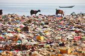 foto of discard  - Dump on the beach of Socotra Island  - JPG