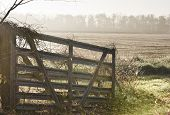 foto of early morning  - Gate on missouri farm in early morning - JPG