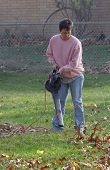 pic of leaf-blower  - Woman using a leaf blower on the lawn - JPG