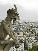 picture of notre dame  - From the roof of Notre Dame Cathedral in Paris