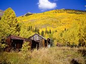 image of colorado high country  - Old Silver Mining Cabins in Fall colors of Colorado USA - JPG