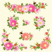 stock photo of dog-rose  - Decorative ornaments with flowers and rose hips and bumblebees - JPG