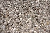 picture of shale  - Conglomerate of assorted irregular pebbles and concrete  - JPG